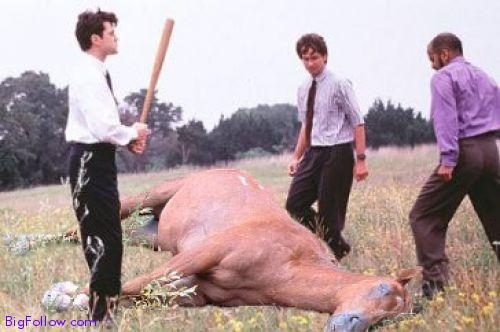 BEATING-A-DEAD-HORSE-The-office-space-scene-with-a-dead-horse.jpeg